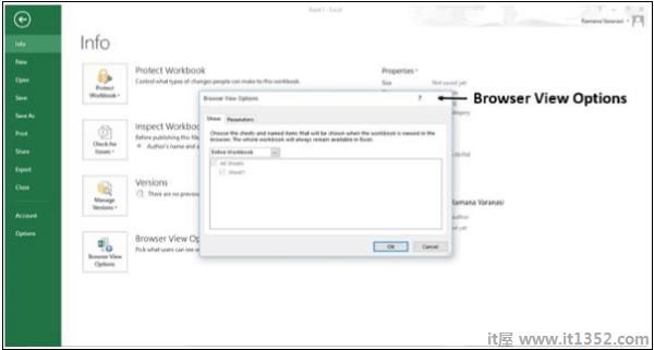 浏览器视图选项窗口
