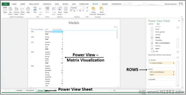 Power View Matrix Visualization