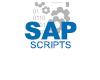 SAP脚本教程